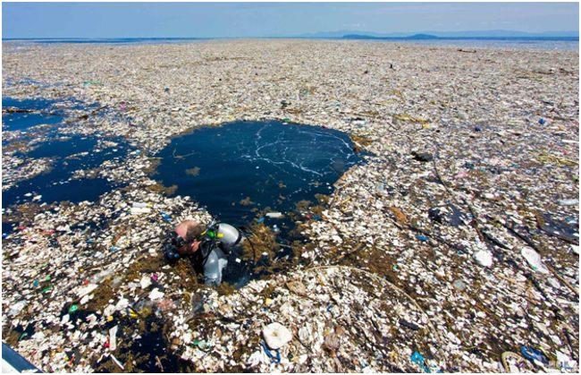 аквалангист в мусорном пятне