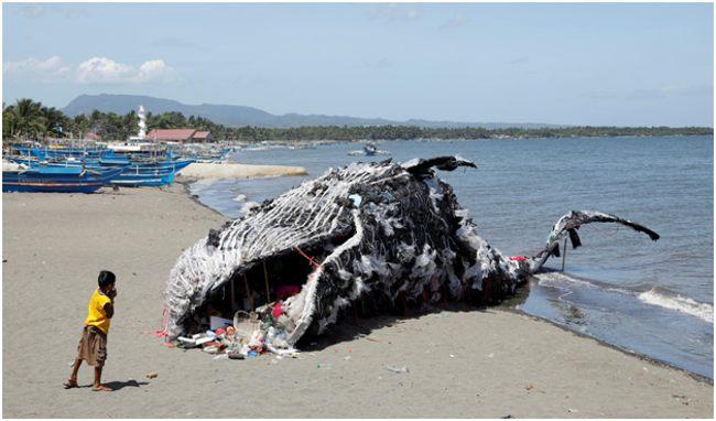кит, нашпигованный мусором