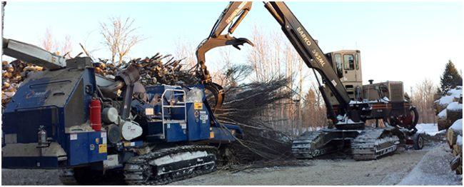 переработка веток на лесозаготовке