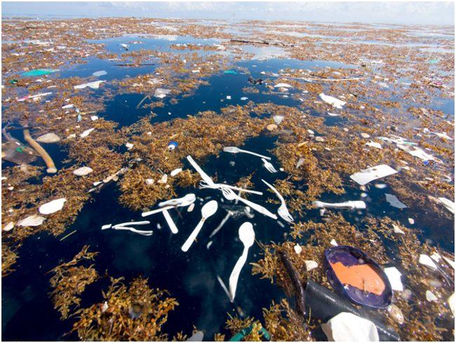 пластиковые ложки в океане