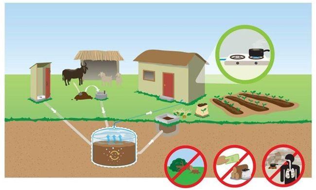 получение биогаза дома