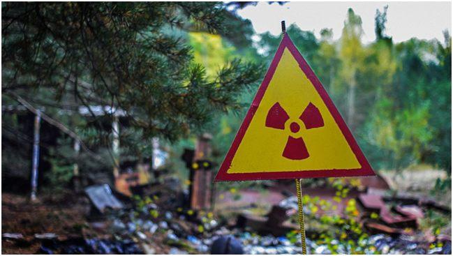значок радиации в лесу