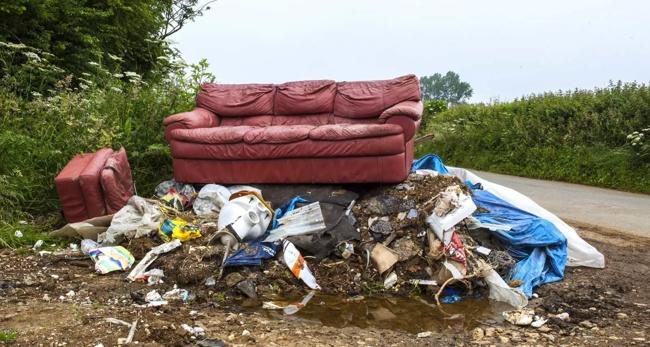 диван на помойке