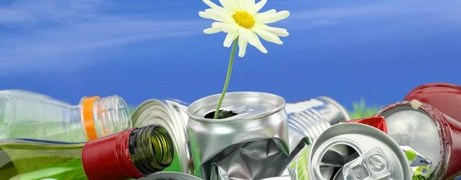 расцвел цветок из мусора
