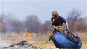 сжигание сухой травы на участке