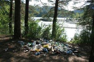 мусор в лесу1