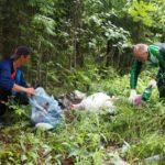 сбор мусора в лесу