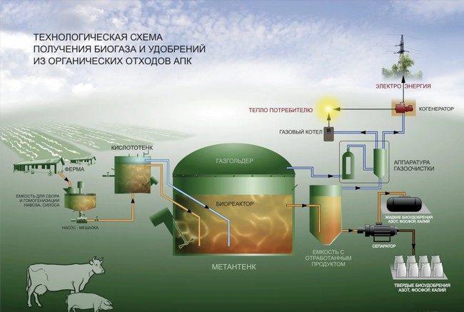 схема получения биогаза
